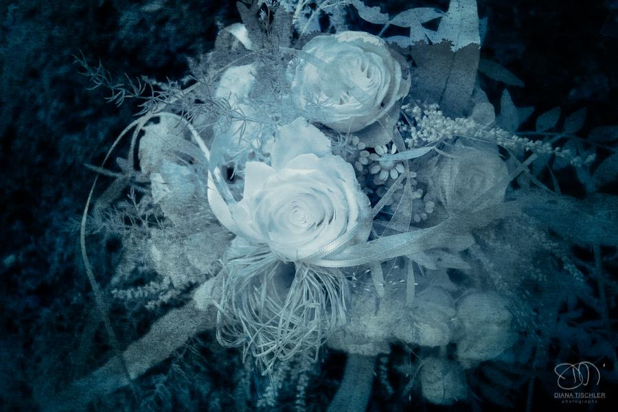Infrarot Hochzeitsfotos Rosen