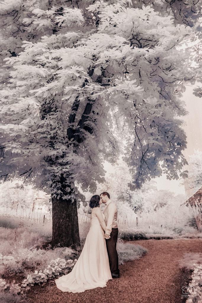 Infrarot Foto Hochzeit Brautpaar unter einem Baum Kuss